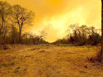 Se reactivan los incendios forestales en el Chaco