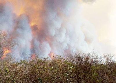 Se incendia el Chaco y Marito se manda mudar