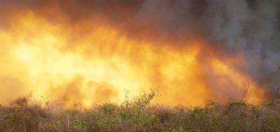 Fuego incontrolable en el pantanal paraguayo