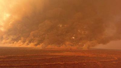 Incendios forestales afectan 120.000 hectáreas en el Chaco