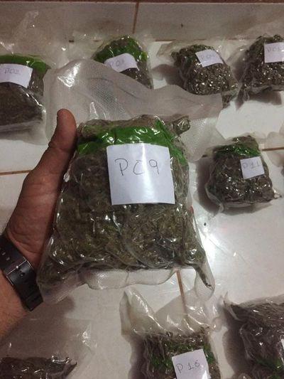 """Cae """"Cheto"""": vendía marihuana envasada al vacío"""