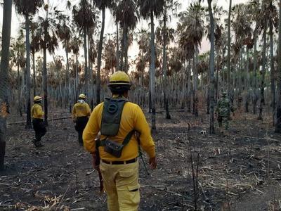 Fiscalía investiga a 15 propietarios de estancias por incendios provocados