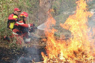 Sin plan, contener incendio en Paraguay depende de lluvias