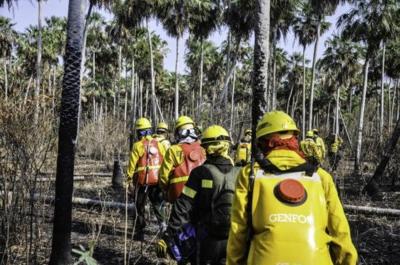 Bomberos apelan a donación ciudadana para continuar con el combate de los incendios