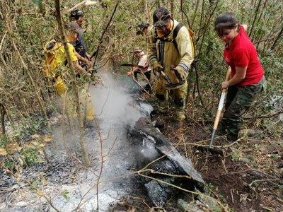 Incendios forestales: Estancieros se exponen a multas de G. 840 millones