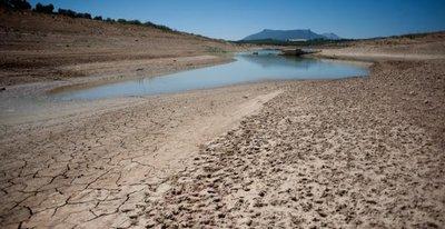 Sequía preocupa a productores