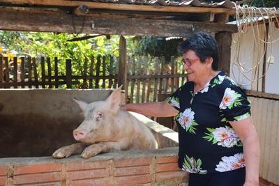 Producción animal, fuente segura de ingresos para familias emprendedoras de Tenonderã