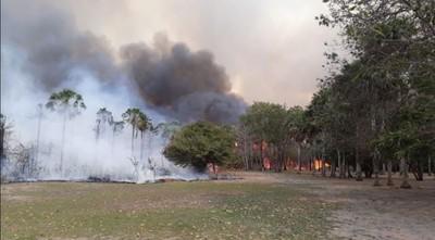 Incendios en el Amazonas: ¿qué pasó con las llamas que arrasaban las selvas en Brasil, Bolivia y Paraguay?