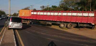 Transganado cae a la cuneta y obstaculiza tráfico sobre la Transchaco