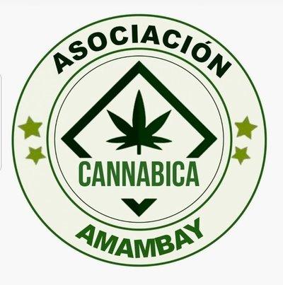 Crean la asociación cannabica medicinal en Pedro Juan