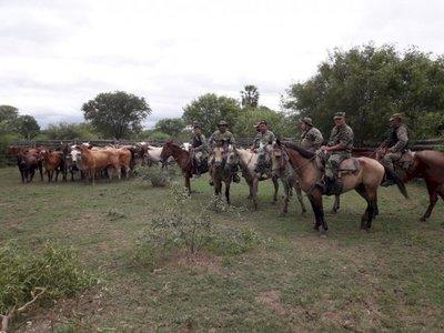 Recuperan animales vacunos robados en estancia del Chaco
