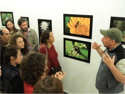 Galerías y espacios de Asunción invitan a un recorrido por el arte