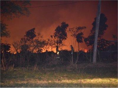 Bomberos controlan incendio forestal en Ypacaraí