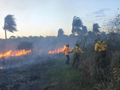 El fuego se extiende en varias zonas de la Región Oriental