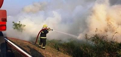 Luego de ocho horas, controlaron incendios en Parque Guasu •