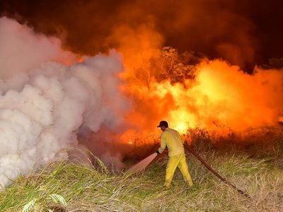 Parque Guasu: Montarán guardia a pesar de haber controlado incendio
