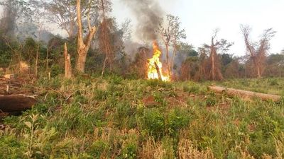 Diferentes focos de incendio se registraron en Paraguarí