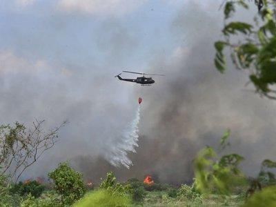 Incendio afectó a cerca de 30 ha. del Parque Guasu