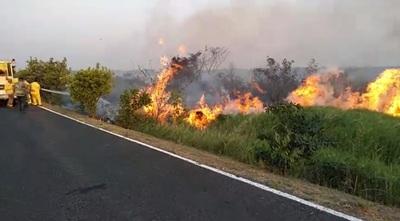 Incendio en Parque Guasu se originó por un 'desliz', según ministro