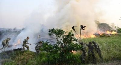 Incendio en Parque Guasú: Piden a la Fiscalía investigar y determinar responsables