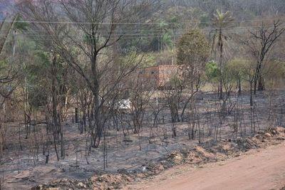 Lluvias aplacan incendios en Bolivia