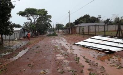 Árboles caídos, cables sueltos y corte de energía tras tormenta