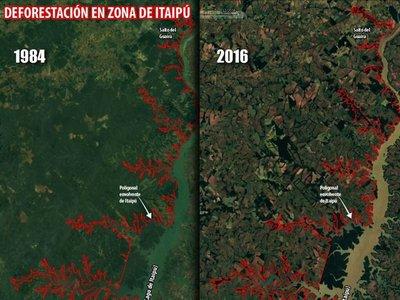 Itaipú elogia  plan de reforestación, pero mapeo muestra degradación