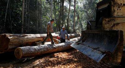 Bolsonaro asegura que la Amazonía está «casi totalmente preservada