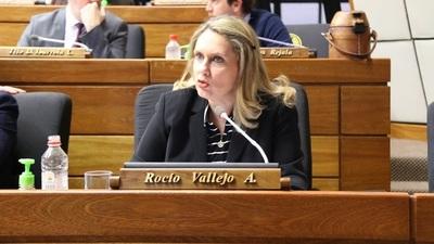 Diputada denuncia corrupción en el rubro combustibles para reparación de caminos