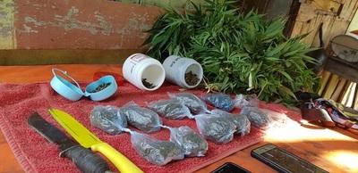 desbaratan esquema de distribución de cocaína y marihuana en Kambala