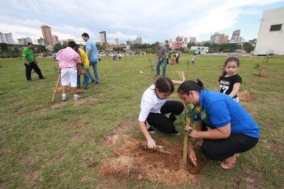 Costanera: Harán túnel con árboles de lapacho en homenaje a mujeres