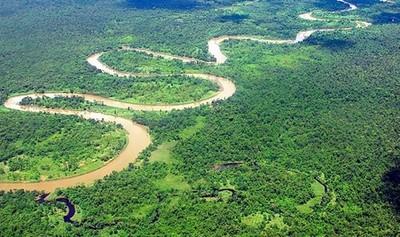 """Bolsonaro asegura que la Amazonía está """"casi totalmente preservada"""""""