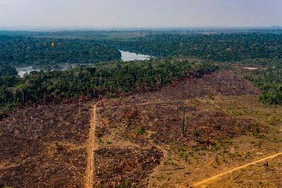 Brasil dirá al Vaticano que es el único responsable del cuidado del Amazonas