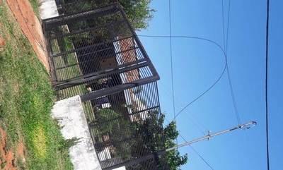 Susto en Costa Sosa por cable suelto de la ANDE •