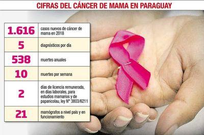El cáncer de mama lleva la delantera en nuevos casos y en mortalidad