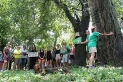 Entre acusaciones y al punto de ir al mosquete, concejales aprueban obras del viaducto de Botánico