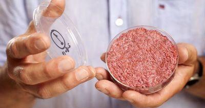 La carne y el pescado artificial se acercan a nuestros platos