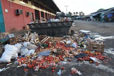 Latinoamérica, responsable de 20% de pérdida mundial de alimentos