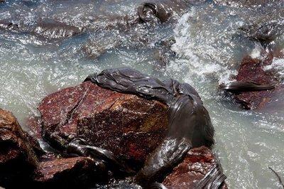 El Estado de Bahía en Brasil declara emergencia por derrame de petróleo