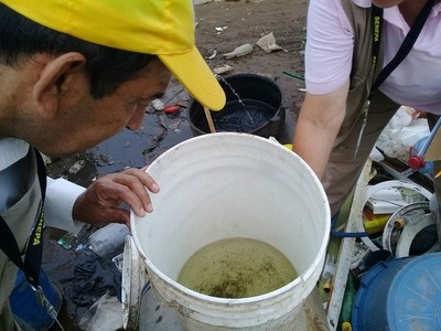Ante una alerta de epidemia de dengue, instan a eliminar criaderos