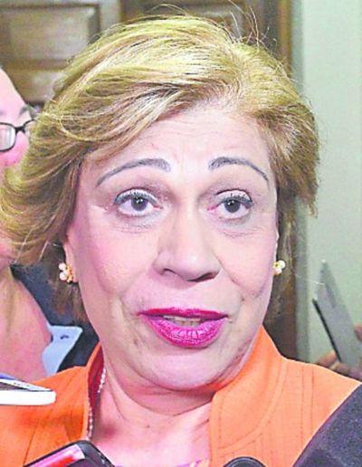 Bareiro solicita que el pleno defina acceso a  información