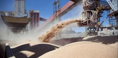 Exportaciones de soja alcanzaron USD 1.448 millones a setiembre