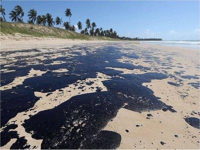 Tortugas marinas, mayores víctimas del derrame de petróleo en Brasil