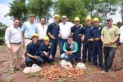 LA GOBERNACIÓN Y EL MINISTERIO DE AGRICULTURA IMPULSAN LA PRODUCCIÓN DE PAPA EN VARIOS DISTRITOS DEL DEPARTAMENTO.