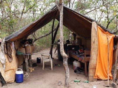 Rescatan a paraguayos que eran casi esclavizados en Brasil