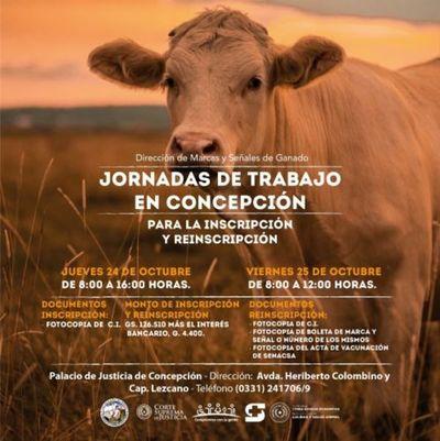 Próximas jornadas de inscripción y reinscripción de ganado en Concepción