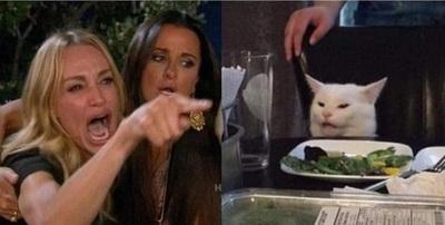 El origen y desopilantes memes de la mujer gritando y el gato