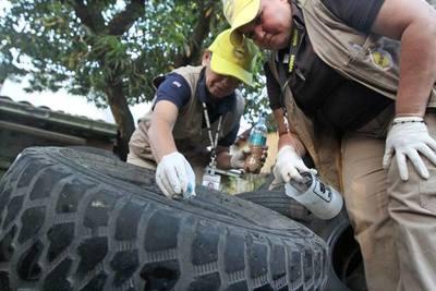Eliminar criaderos, clave para frenar la expansión del dengue