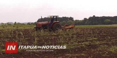 PLAN DE RECUPERACIÓN DE SUELO EN PEQUEÑAS FINCAS AGRÍCOLAS
