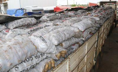 Agentes decomisan 35 toneladas de papas de contrabando